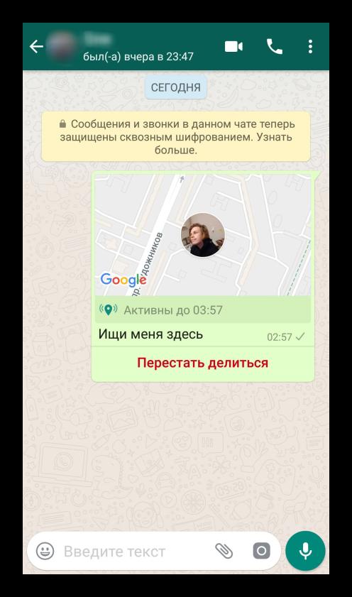 Демонстрация текущего геоположения в WhatsApp