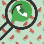 Поиск сообщений внутри чата WhatsApp